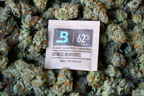 Boveda preserving cannabis