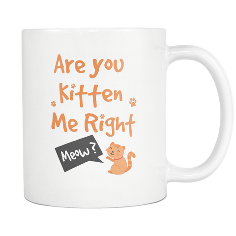 Are You Kitten Me Mug