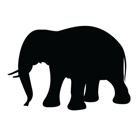 Elefant - Safaridyr wallstickers