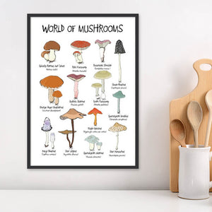 World of mushrooms - Plakat