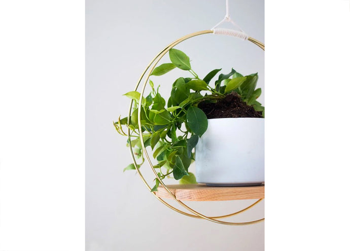 White Oak Hanging Wood Planter
