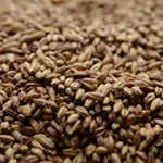 Victory Malt (Briess) 1 Lb - The Brewmeister