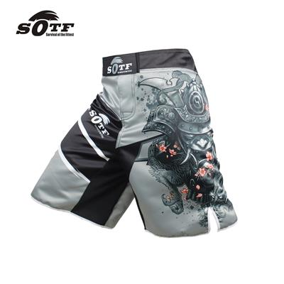 White Dragon MMA and Grappling Shorts