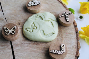 Curiosity Corner Oak Stamps - Butterfly Life Cycle - Isaac's Treasures