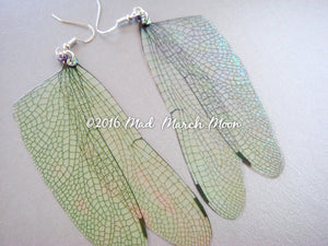 Fairy wing earrings, Dragonfly
