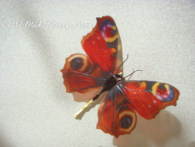 Peacock Butterfly hair pin