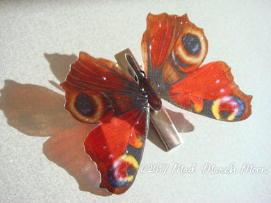 Peacock Butterfly Croc Clip