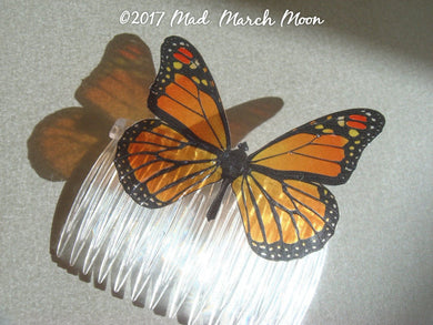 Monarch Butterfly Comb