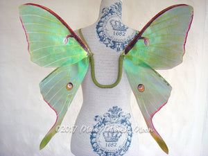 Luna Moth Costume wings adult size