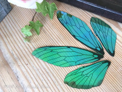 Blue Green Fairy wing set for craft, Large size