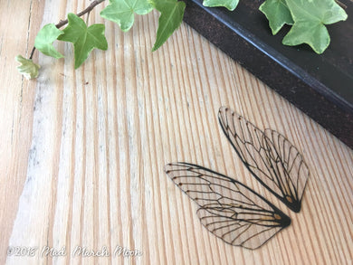 Mini fairy wings for craft 'Natural'