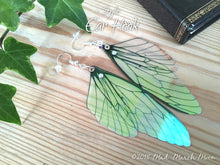 Fairy wing earrings, plain iridescent cicada style