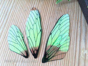 Fairy wing set Plain Iridescent for craft Medium