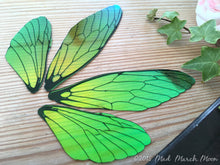 Absinthe Fairy wing set for crafts Large Size