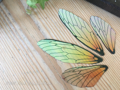Fairy wing set for craft, Large size, 'Orange Blossom'