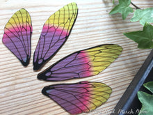Fairy wings for crafts 'Jelly Tot' Medium