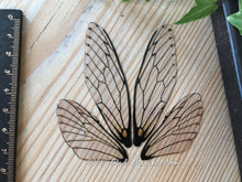 Fairy wings for crafts 'Natural' Medium