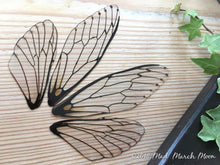 Fairy wings for craft 'Natural' Large