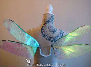 Dragonfly Costume Fairy Wings, Small