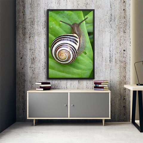 Tableau Escargot