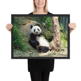 Tableau Panda Cool en digestion