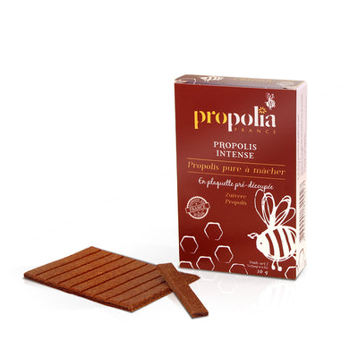Propolis plaque pure à mâcher 10g