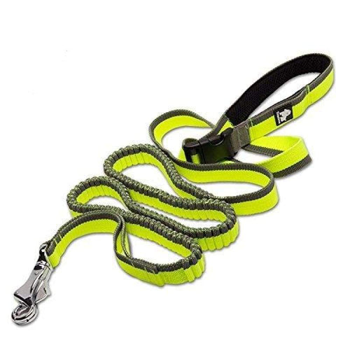 Handsfree Bungee Leash - Too Cute Dog Shop