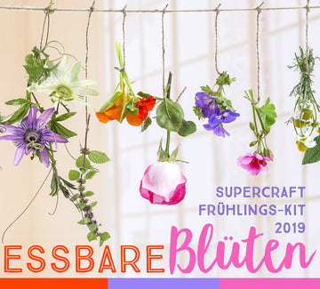 supercraft Frühlings-Kit 2019