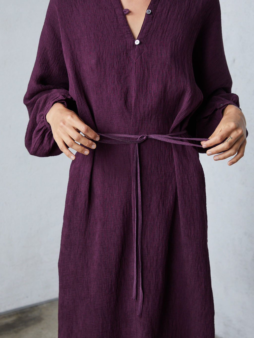 Plum Fortuny Pleats Getty Dress