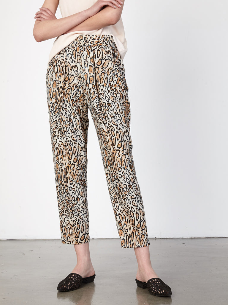 products/z72-6573-classicleopard0941.jpg