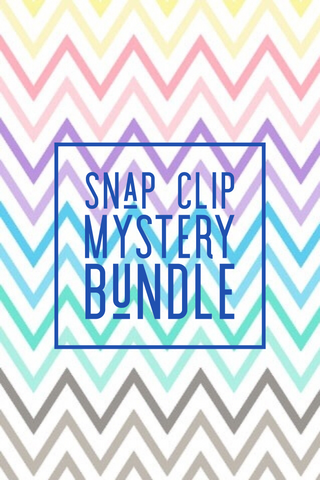 Mystery Snap Clip Bundle (5 snap clips)