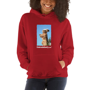ColoradoGoofy Hooded Sweatshirt