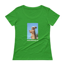 Load image into Gallery viewer, ColoradoGoofy Ladies' Scoopneck T-Shirt