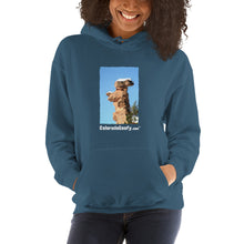 Load image into Gallery viewer, ColoradoGoofy Hooded Sweatshirt