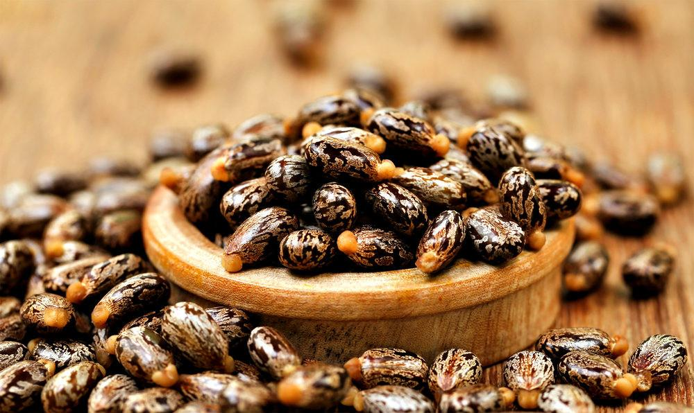 What is Jamaican Castor oil