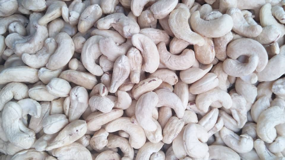 Wholesale plain cashews - 10kg