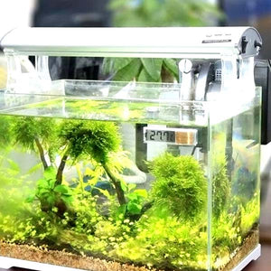 Temperature Measurement for Fish Tank