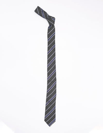 ESQUE' GREY AND BLUE STRIPE NECK TIE