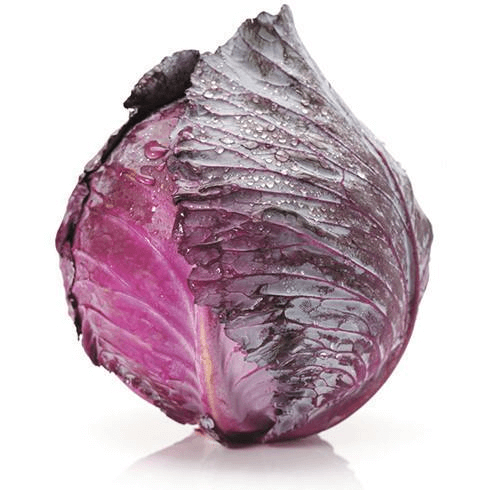 Cabbage Red Whole