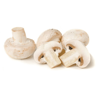 Mushrooms Buttons 250gr