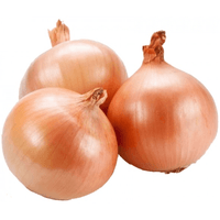 Onions Brown 1.5kg