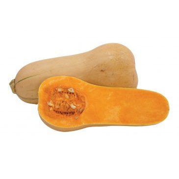 Pumpkin Butternut Whole