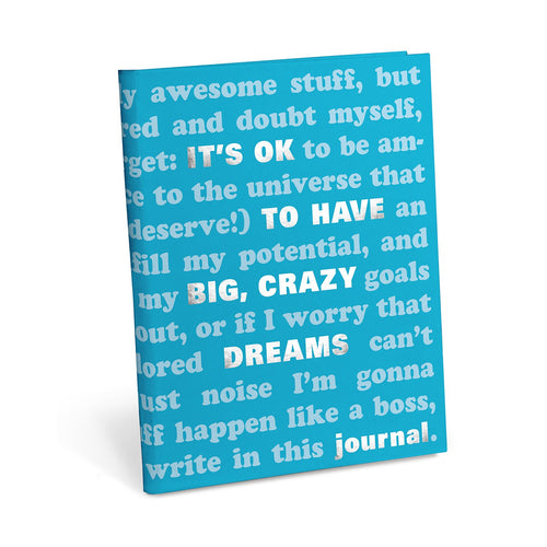 It's OK to have big crazy dreams journal