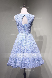 Blue A Line Round Neck Sleeveless Homecoming Dresses Lace Cocktail Dresses