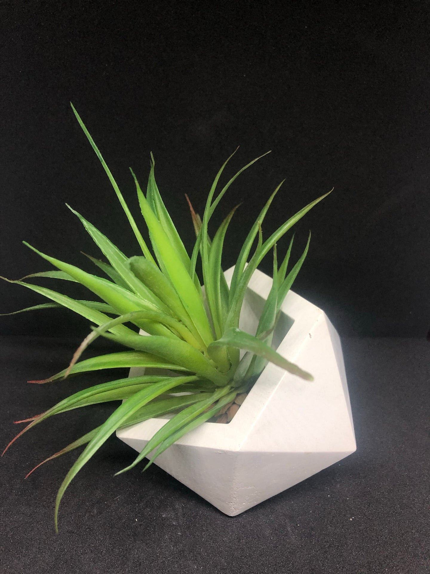 Large white Icosahedron planter