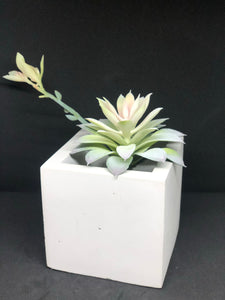 Large white cube planter