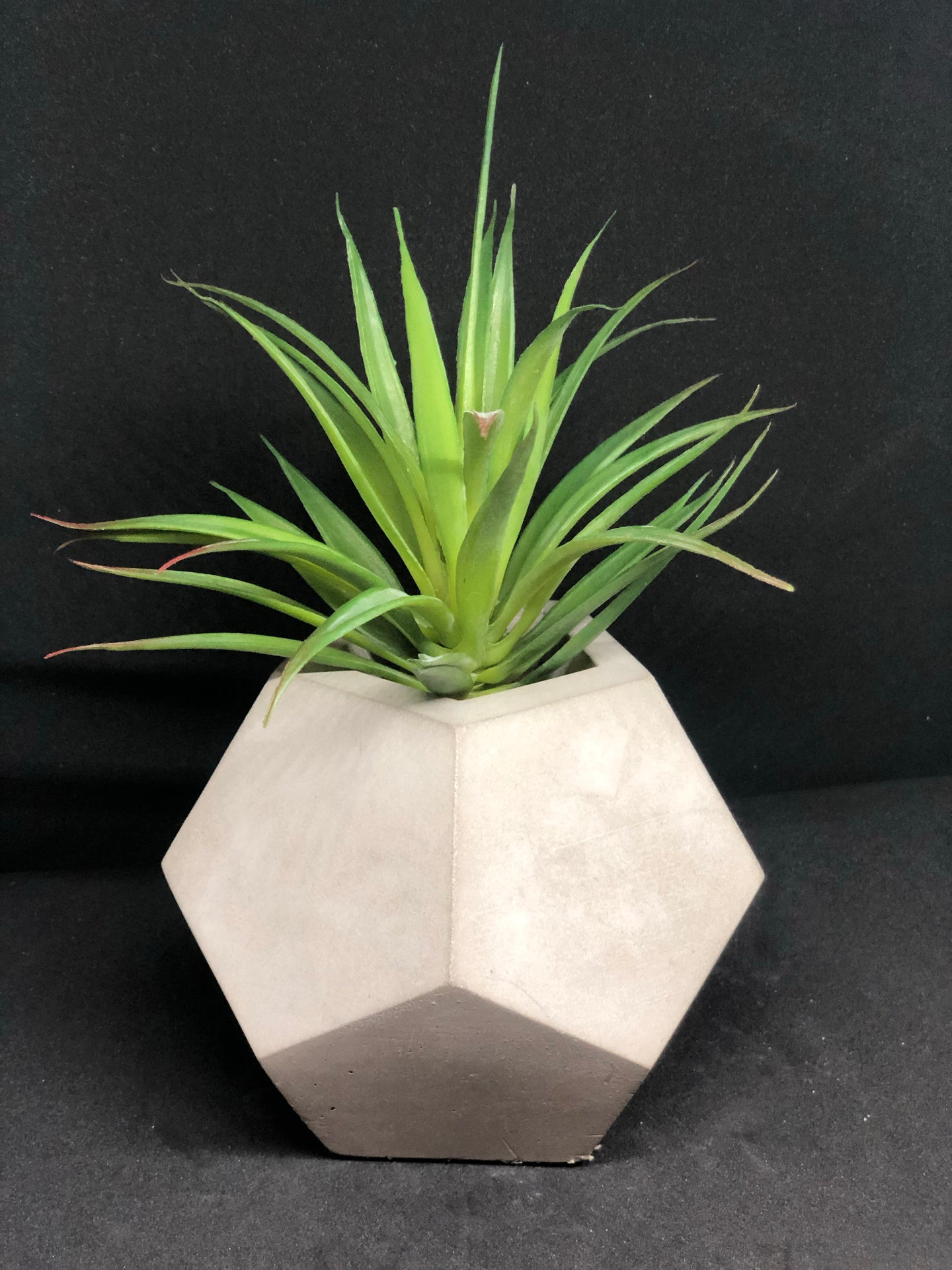 Large grey dodecagon planter