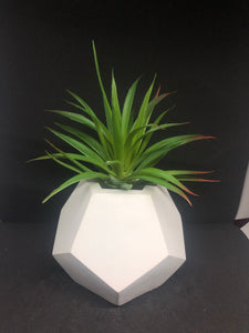 Large white dodecagon planter