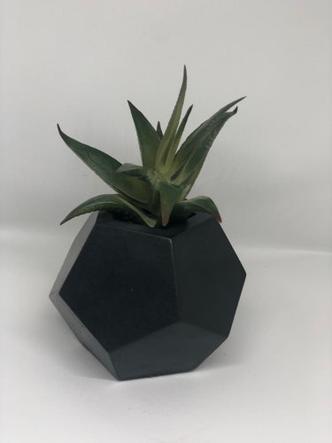 Medium charcoal dodecahedron planter