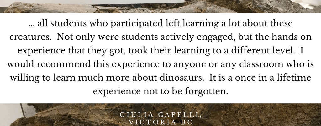Dino Lab Inc offers school presentations where kids get to touch dinosaur bones. Our teachers and students love it when we visit. Here's a testimonial.